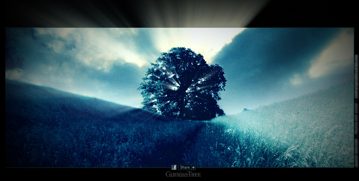 Guerilla Tree
